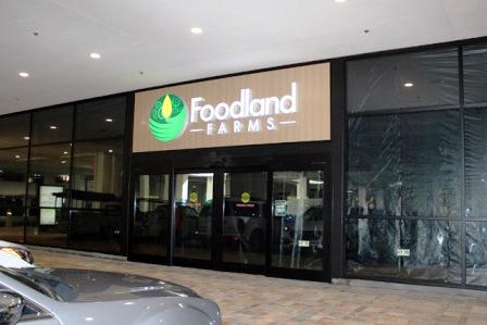 Food_1_2